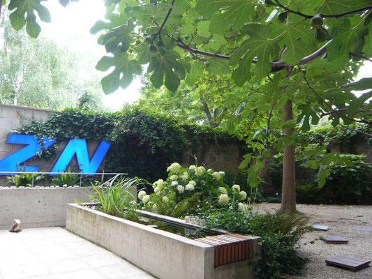 Hofentkernung mit neuer Gartengestaltung - Foto © Knauer Architekten
