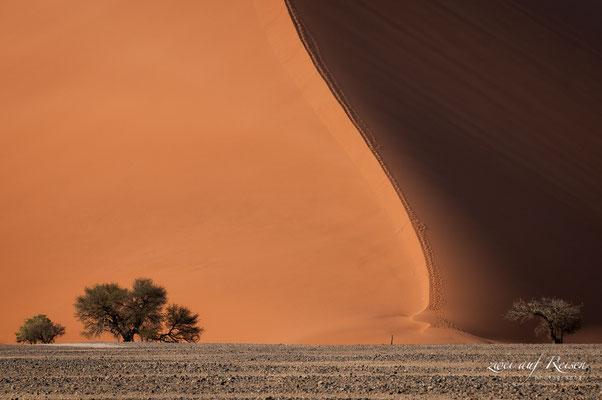Namib Desert NP, Namibia