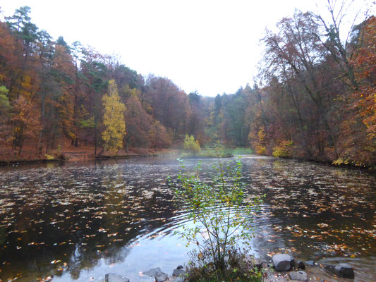 Karlsbergweiher