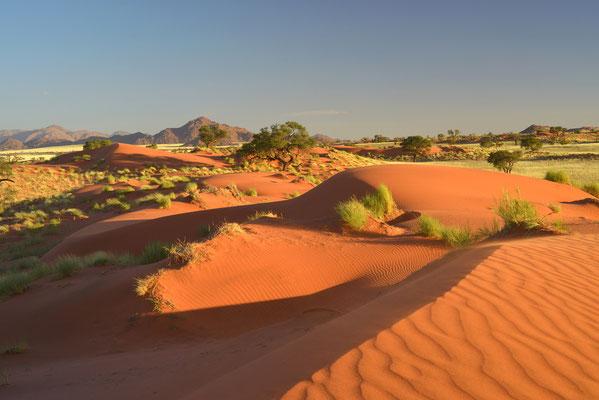Im Namibrand Natute Reserve