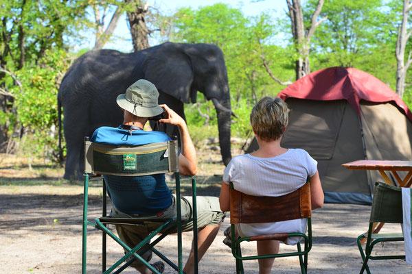 Besucher am Zelt, Nxai Pan BOT