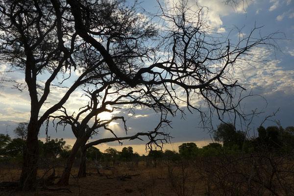 unterwegs bei Nambwa