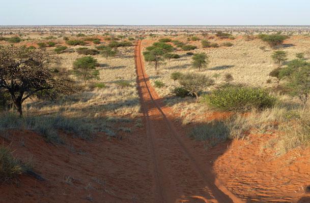 Kalahari-Weite
