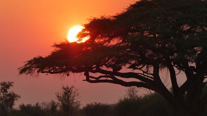 Sundown in Hwange NP ZIM