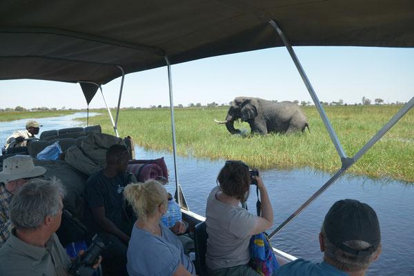 Bootsfahrt auf dem Okavango (BOT)