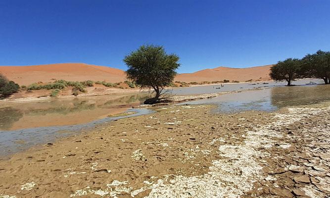 Ein See im Sossusvlei