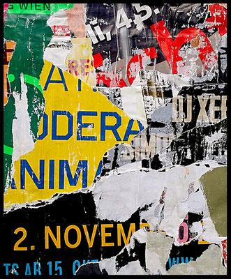 2. November, Décollage, 25,7 x 21,2 cm, 2017