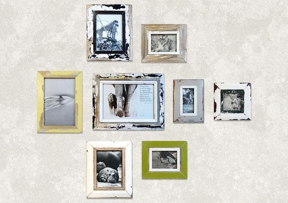 Arredamento studio con poltrona design e gruppo di cornici a parete con foto di animali