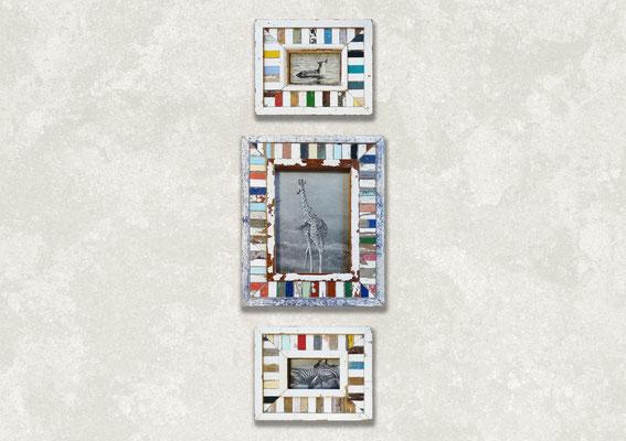 Gruppo cornici Cape Best mosaico in soggiorno moderno con foto di animali
