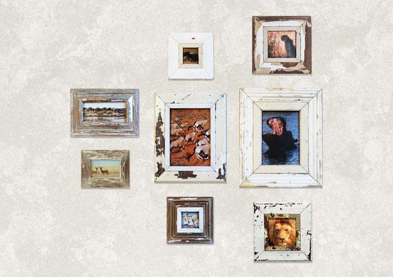 Arredamento design moderno con cassettiera e gruppo di cornici con foto di animali