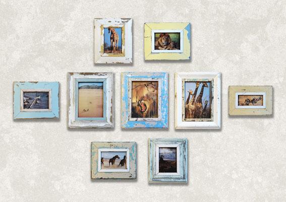 Composizione grande di quadri Cape Best con foto di animali e safari
