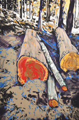 t5 100cm x 150cm acrylic on natural canvas
