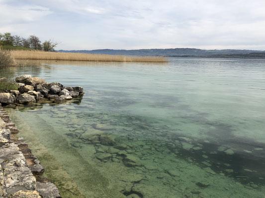 Wunderbare Aussicht über den See