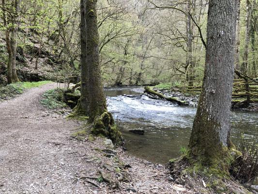 Fussweg zur Burg Eltz