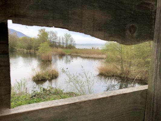 Guckloch ins Naturschutzgebiet