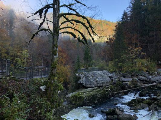 Flusslauf Saut du Doubs