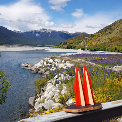 Neuseeland, Arthurs Pass...traumhafte Kulissen und die für das Land so typischen Lupinen.. (Phil)