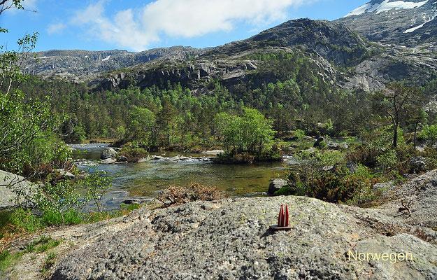 Norwegen, In den Bergen über Kvinnherad. Das Wasser, das hier reichlich in Bächen fließt, kann man getrost trinken. (Silke)