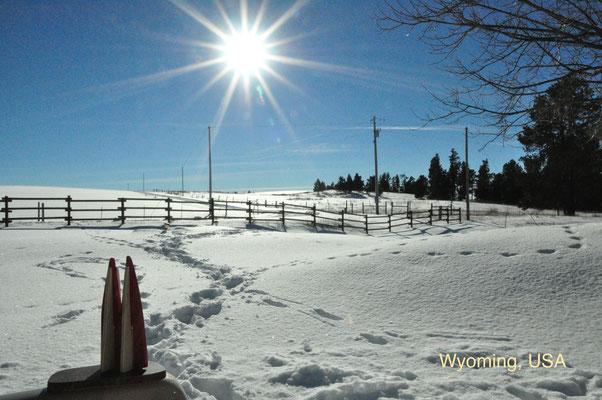 USA: Wyoming, in der Nähe des kleinen Ortes Hulett. Hier gibt es vor allem eins: Landschaft. Vorsicht: Irgendeinem gehört das Land immer, auf dem du rumspazierst. Wenn der Besitzer mies gelaunt ist, steht er auch schonmal mit 'ner Knarre vor dir. (Silke)