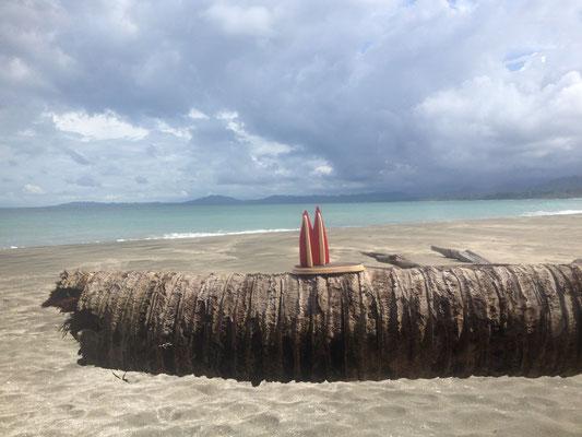 Costa Rica, Karibik, Cahuita (Hilde)