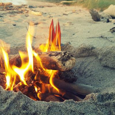 """Neuseeland, Westküste, Mokihinui, favourite Campingplatz überhaupt """"Gentle Annys Seaside Accomodation"""", direkt am Wasser übernachten und dann am Abend Lagerfeuer am Strand, in Neuseeland erlaubt. (Phil)"""