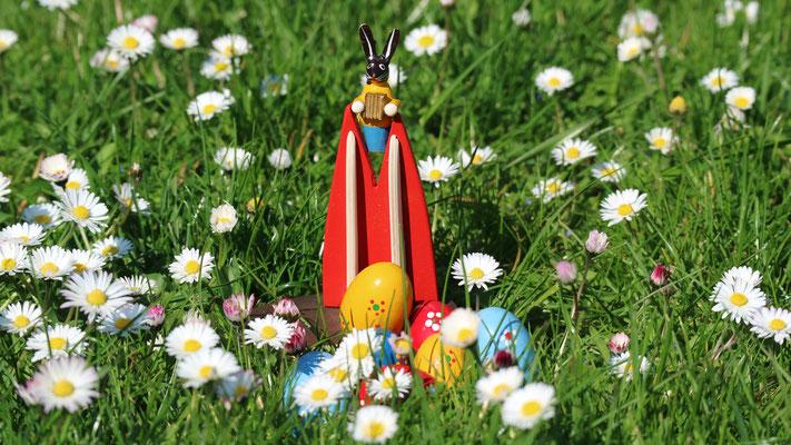 Holland: Ostergruß von der Blumenwiese (Silke)