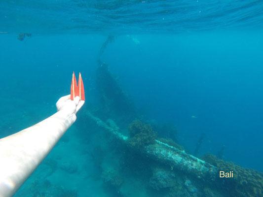 Indonesien, Bali, der Dom auf Tauchgang in der Crystal Bay auf Nusa Penida. Viele Einheimische, Schildkröten und eine tolle Unterwasserwelt. Schnorcheln super! (Nina)