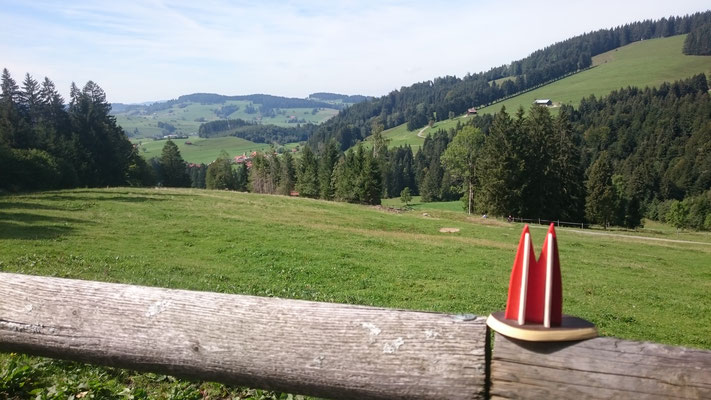 Wundervoller Blick im Allgäu Richtung Oberstaufen - Buflings (Wolfgang)