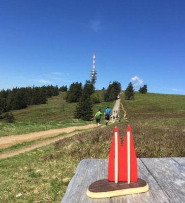 Deutschland, Schwarzwald: Aufstieg zum Feldberg (Maria, Klaus und Uwe)