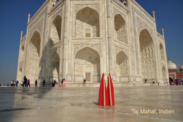 Indien: Agra, Taj Mahal, Weltkulturerbe. Vorsicht, der Dom wäre fast nicht durch die Security gekommen. Auf jeden Fall auseinandergenommen ins Säckchen packen und dann sagen es sei ein Spielzeug zum Zusammenstecken. (Silke)