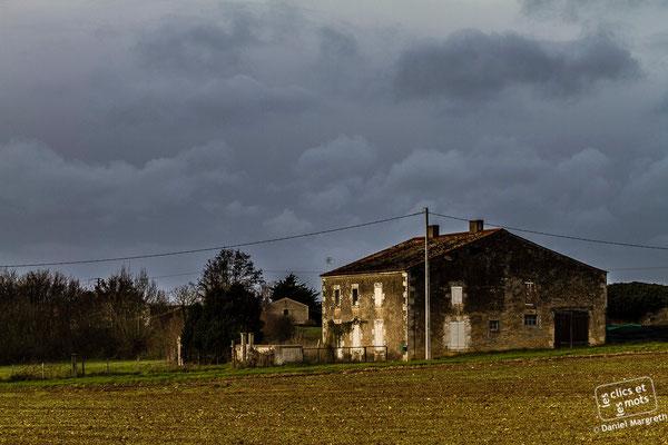 04 janvier 2014. La petite maison au bout du champ. Maillezais. Vendée.