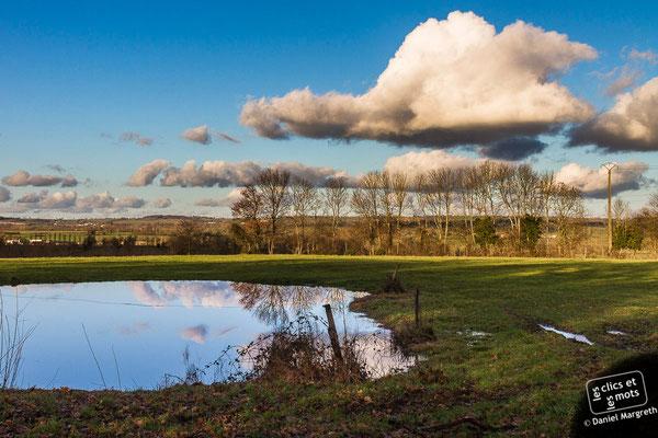 29 décembre 2013. La mare aux nuages. Faymoreau. Vendée.