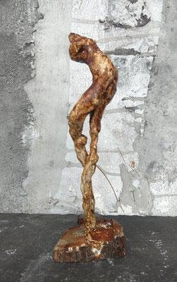 langbein (eichentänzer), ca. 30 cm