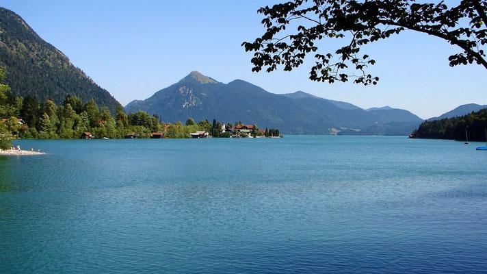 Am Walchensee / Blick zum Herzogenstand