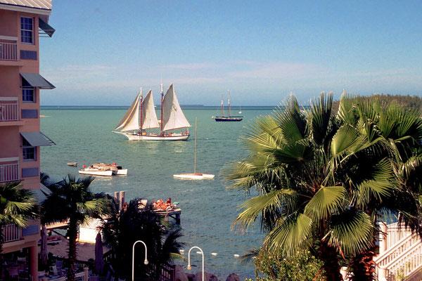 Auf den Florida Keys, hier Key West, fängt die Karibik an