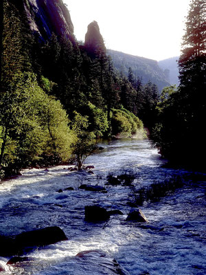 Merced River valley im Yosemite NP, CA (1984)