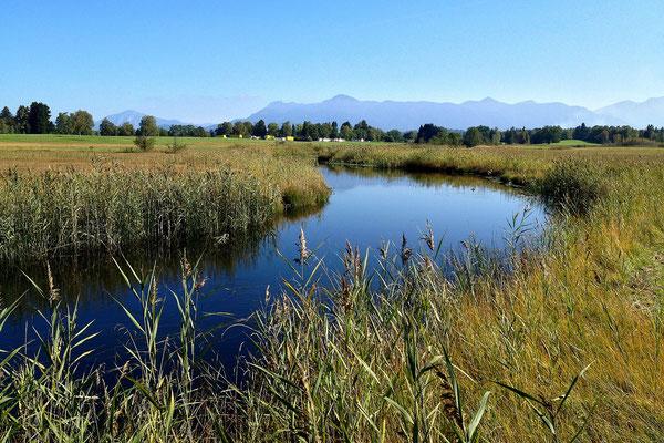 Zufluss des Staffelsees in Oberbayern