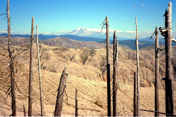 Am Mount St. Helens, Wa. (1995)