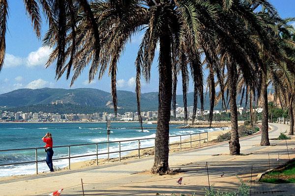 Mallorca - Playa de Palma