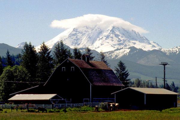 Mount Rainier, Wa. (1995)