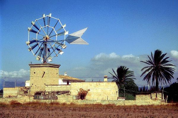 Mallorca, die liebste Ferieninsel der Deutschen
