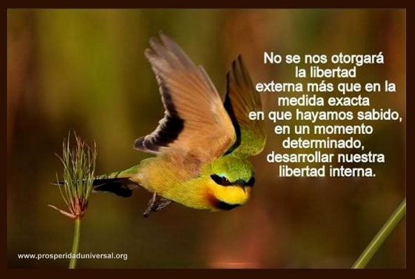 PERLAS DE SABIDURÍA - PROSPERIDAD UNIVERSAL -  LIBERTAD EXTERNA - LIBERTAD INTERIOR