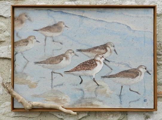 des paysages et des animaux – surtout des oiseaux.