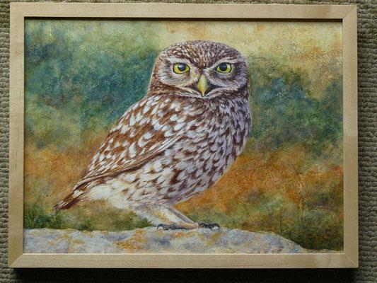 Il s'ensuit que mes tableaux puisent souvent de l'inspiration du monde naturel :