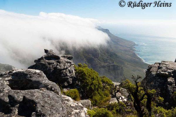 Wolken über dem Tafelberg, 15.1.2019