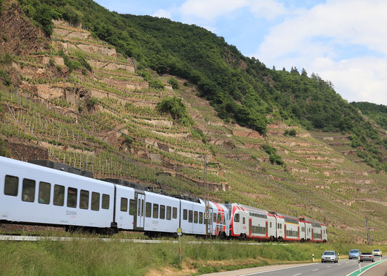 Rhin/Moselle