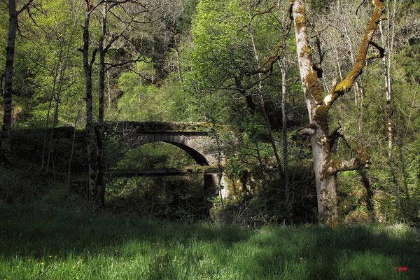 Pont sur le Bétuzon vers le château de Roquedols
