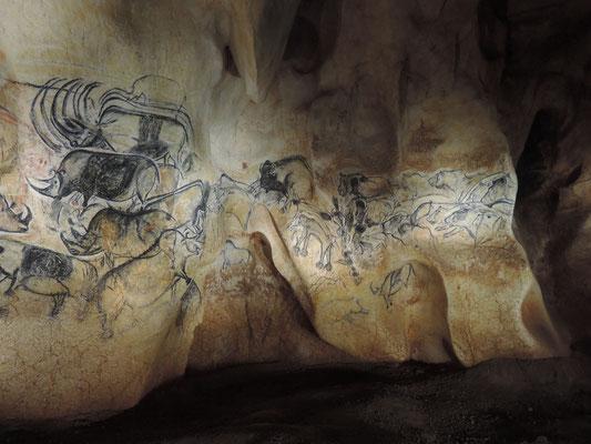 grotte Chauvet, Pont d'Arc, parois avec des peintures datant de 36.000 années!