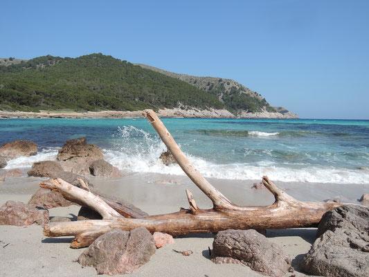 cala Molto (au Nord-Est de l'île)