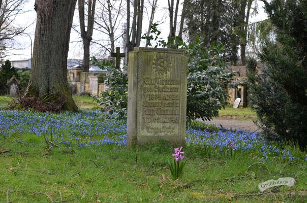 Hasefriedhof in Osnabrück, 11. März 2020 / Foto: Batty Blue